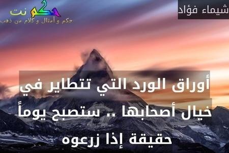 أوراق الورد التي تتطاير في خيال أصحابها .. ستصبح يوماً حقيقة إذا زرعوه -شيماء فؤاد