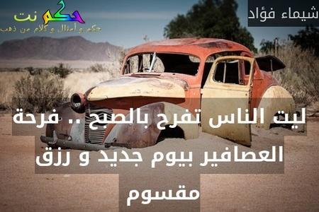 ليت الناس تفرح بالصبح .. فرحة العصافير بيوم جديد و رزق مقسوم -شيماء فؤاد