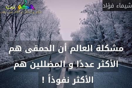 مشكلة العالم أن الحمقى هم الأكثر عددًا و المضللين هم الأكثر نفوذاً ! -شيماء فؤاد