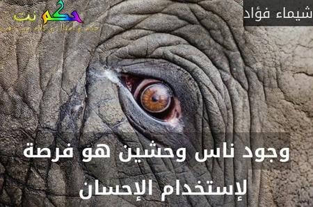وجود ناس وحشين هو فرصة لإستخدام الإحسان  -شيماء فؤاد