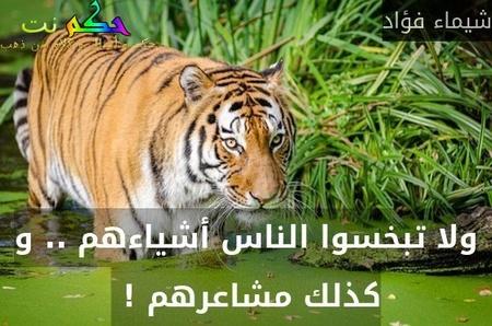 ولا تبخسوا الناس أشياءهم .. و كذلك مشاعرهم ! -شيماء فؤاد