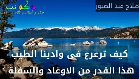 كيف ترعرع فى وادينا الطيب هذا القدر من الاوغاد والسفلة -صلاح عبد الصبور