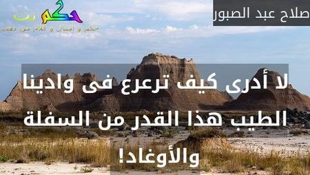 لا أدرى كيف ترعرع فى وادينا الطيب هذا القدر من السفلة والأوغاد! -صلاح عبد الصبور