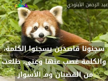 سجنونا قاصدين يسجنوا الكلمة، والكلمة غصب عنها وعني، طلعت من القضبان ومـ الأسوار -عبد الرحمن الأبنودي