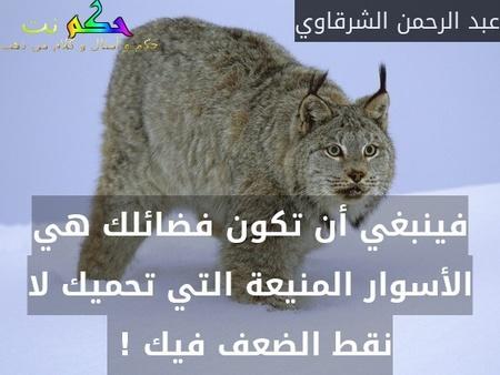 فينبغي أن تكون فضائلك هي الأسوار المنيعة التي تحميك لا نقط الضعف فيك ! -عبد الرحمن الشرقاوي