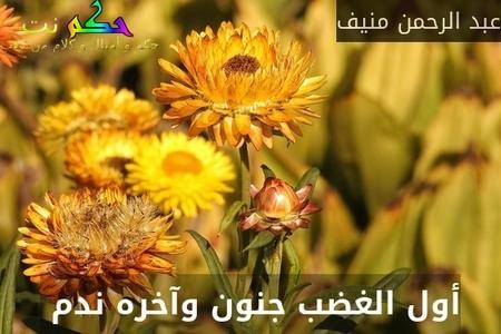أول الغضب جنون وآخره ندم -عبد الرحمن منيف