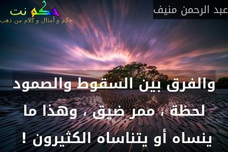 والفرق بين السقوط والصمود لحظة ، ممر ضيق ، وهذا ما ينساه أو يتناساه الكثيرون ! -عبد الرحمن منيف