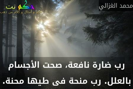رب ضارة نافعة، صحت الأجسام بالعلل. رب منحة فى طيها محنة.-محمد الغزالي