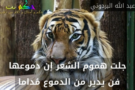 جلت هموم الشعر إن دموعها فن يدير من الدموع مُداما -عبد الله البردوني