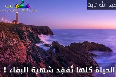 الحياة كلها تُفقِد شهية البقاء ! -عبد الله ثابت