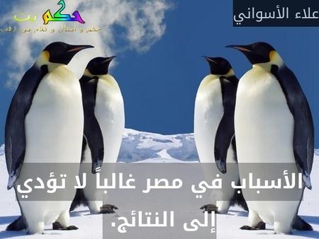 الأسباب في مصر غالباً لا تؤدي إلى النتائج. -علاء الأسواني