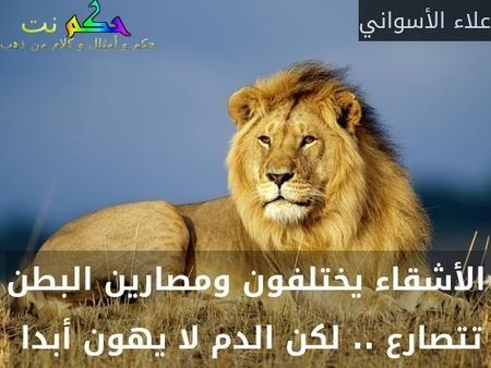 الأشقاء يختلفون ومصارين البطن تتصارع .. لكن الدم لا يهون أبدا -علاء الأسواني