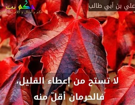 لا تستح من إعطاء القليل، فالحرمان أقلّ منه -علي بن أبي طالب