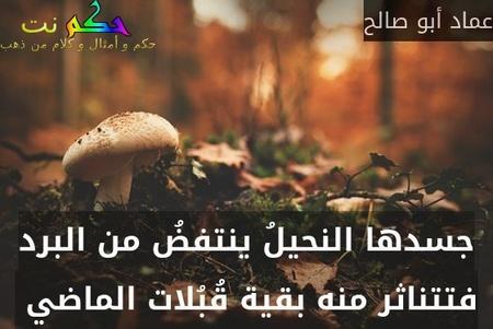 جسدها النحيلُ ينتفضُ من البرد فتتناثر منه بقية قُبُلات الماضي -عماد أبو صالح