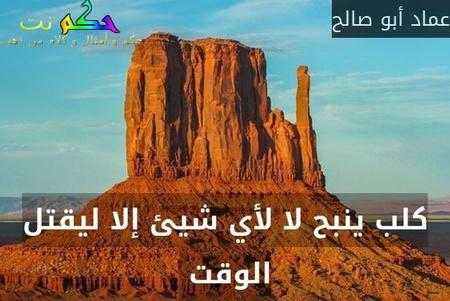 كلب ينبح لا لأي شيئ إلا ليقتل الوقت -عماد أبو صالح