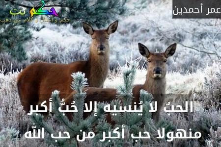 الحبُ لا يُنسيه إلا حُبُّ أكبر منهولا حب أكبر من حب الله -عمر أحمدين