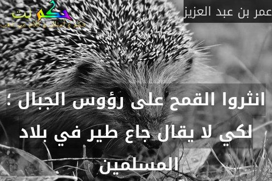 انثروا القمح على رؤوس الجبال ؛ لكي لا يقال جاع طير في بلاد المسلمين -عمر بن عبد العزيز