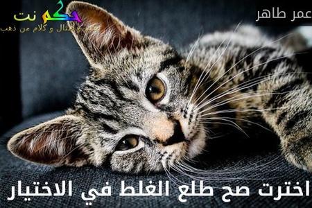 اخترت صح طلع الغلط في الاختيار -عمر طاهر