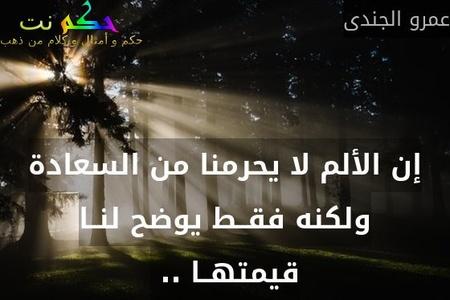 إن الألم لا يحرمنا من السعادة ولكنه فقــط يوضح لنــا قيمتهــا .. -عمرو الجندى