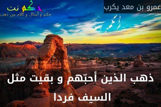 ذهب الذين أحبّهم و بقيت مثل السيف فردا -عمرو بن معد يكرب