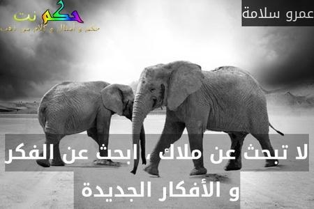 لا تبحث عن ملاك ، ابحث عن الفكر و الأفكار الجديدة -عمرو سلامة