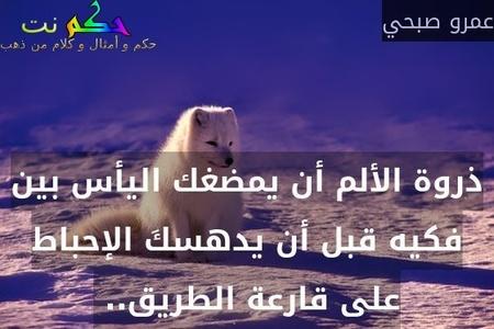 ذروة الألم أن يمضغك اليأس بين فكيه قبل أن يدهسكَ الإحباط على قارعة الطريق.. -عمرو صبحي