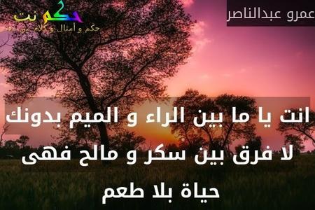 انت يا ما بين الراء و الميم بدونك لا فرق بين سكر و مالح فهى حياة بلا طعم -عمرو عبدالناصر