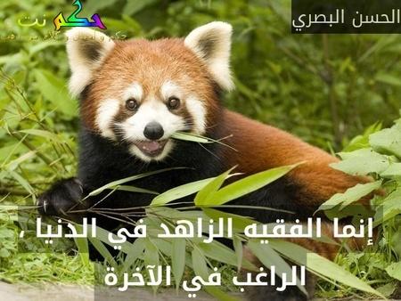 إنما الفقيه الزاهد في الدنيا ، الراغب في الآخرة -الحسن البصري