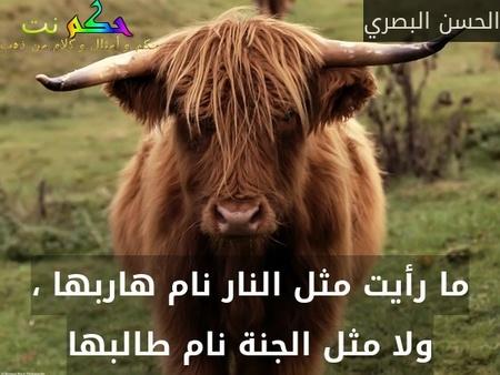 ما رأيت مثل النار نام هاربها ، ولا مثل الجنة نام طالبها-الحسن البصري