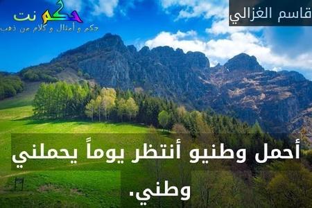 أحمل وطنيو أنتظر يوماً يحملني وطني. -قاسم الغزالي