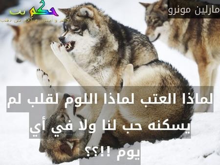 لماذا العتب لماذا اللوم لقلب لم يسكنه حب لنا ولا في أي يوم !!؟؟ -مارلين مونرو