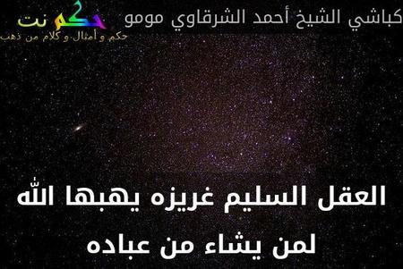 العقل السليم غريزه يهبها الله لمن يشاء من عباده-كباشي الشيخ أحمد الشرقاوي مومو
