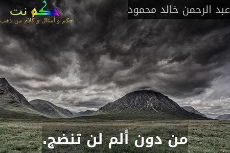 من دون ألم لن تنضج.-عبد الرحمن خالد محمود