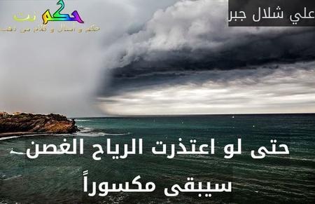 حتى لو اعتذرت الرياح الغصن سيبقى مكسوراً-علي شلال جبر