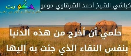 حلمي أن أخرج من هذه الدنيا بنفس النقاء الذي جئت به إليها -كباشي الشيخ أحمد الشرقاوي مومو