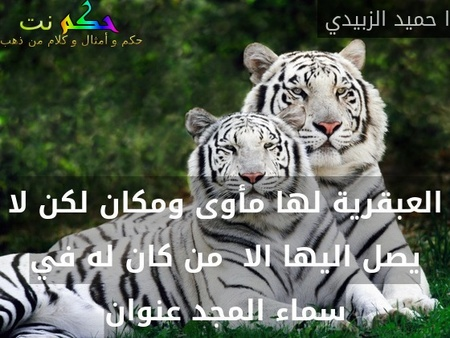العبقرية لها مأوى ومكان لكن لا يصل اليها الا  من كان له في سماء المجد عنوان-ا حميد الزبيدي