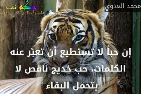 إن حباً لا تستطيع أن تعبّر عنه الكلمات، حب خديج ناقص لا يتحمل البقاء -محمد العدوي