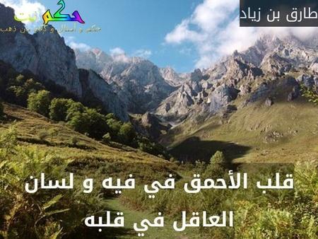 قلب الأحمق في فيه و لسان العاقل في قلبه-طارق بن زياد