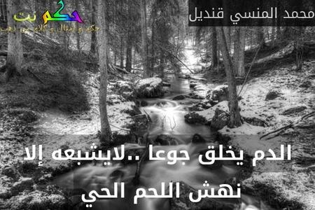 الدم يخلق جوعا ..لايشبعه إلا نهش اللحم الحي -محمد المنسي قنديل