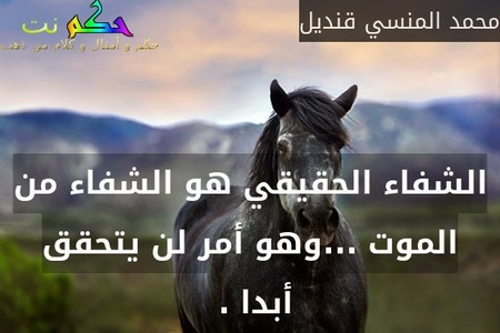 الشفاء الحقيقي هو الشفاء من الموت ...وهو أمر لن يتحقق أبدا . -محمد المنسي قنديل