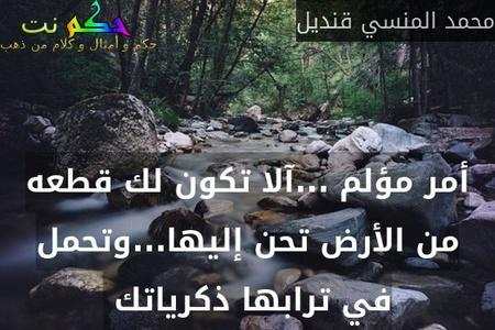 أمر مؤلم ...آلا تكون لك قطعه من الأرض تحن إليها...وتحمل في ترابها ذكرياتك -محمد المنسي قنديل