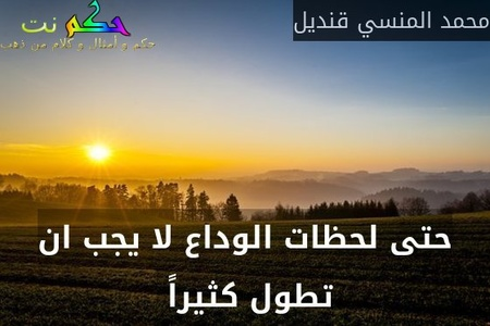 حتى لحظات الوداع لا يجب ان تطول كثيراً -محمد المنسي قنديل