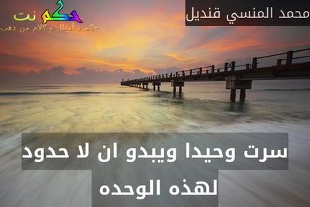 سرت وحيدا ويبدو ان لا حدود لهذه الوحده -محمد المنسي قنديل