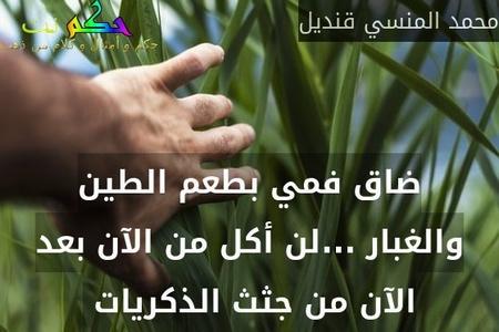 ضاق فمي بطعم الطين والغبار ...لن أكل من الآن بعد الآن من جثث الذكريات -محمد المنسي قنديل