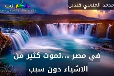 في مصر ...تموت كثير من الاشياء دون سبب -محمد المنسي قنديل