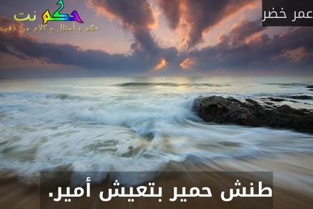 طنش حمير بتعيش أمير. -عمر خضر