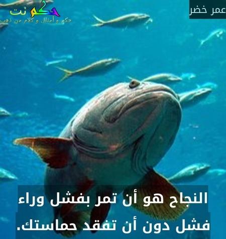 النجاح هو أن تمر بفشل وراء فشل دون أن تفقد حماستك.-عمر خضر
