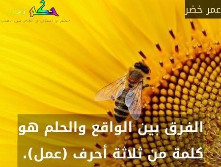 الفرق بين الواقع والحلم هو كلمة من ثلاثة أحرف (عمل). -عمر خضر