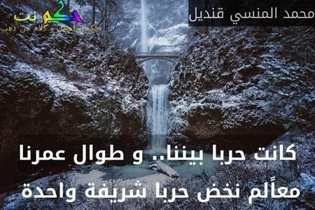 كانت حربا بيننا.. و طوال عمرنا معاًلم نخض حربا شريفة واحدة -محمد المنسي قنديل