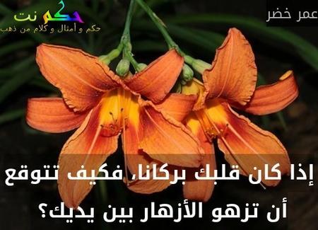 إذا كان قلبك بركانا، فكيف تتوقع أن تزهو الأزهار بين يديك؟ -عمر خضر